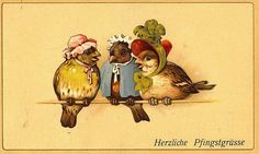 Birds with bonnets