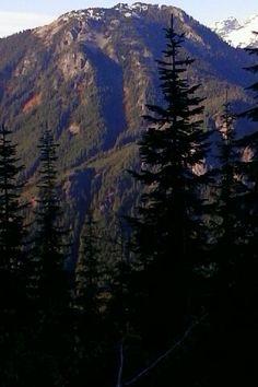 Jacks Pass Skykomish Washington