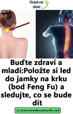 Buďte zdraví a mladí: Položte si led do jamky na krku (bod Feng Fu) a sledujte, co se bude dít Detox, Pilates, Hair Beauty, Yoga, Health, Fitness, Led, Epilepsy, Optimism