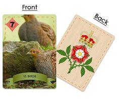The Birds ~ Partridges Partridge, Tudor, Coin Purse, Birds, Grey Partridge, Bird, Coin Purses