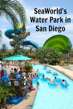 Aquatica - San Diego's Waterpark in San Diego: why to visit & what you need to know before you go!