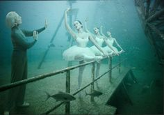 'Life Below The Surface' is a series by Advertising Photographer, Andreas Franke.