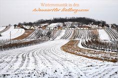 Wer dachte, die Weinviertler Kellergassen sind nur im Sommer schön anzusehen, hat sich geirrt. Besonders im Winter versprüht das Markenzeichen des Weinviertels einen ganz besonderen Charm. Bei einem entspannten Spaziergang durch die glitzernde Winterlandschaft, vorbei an verschneiten Kellergassen, kann die unberühte Natur genossen und den Gedanken freien Lauf gelassen werden. Tipp: Auch im Winter werden Kellergassenführungen angeboten. © Weinviertel Tourismus / Mandl Vineyard, Outdoor, Winter Landscape, Tourism, Basement, Thoughts, Vacation, Summer Recipes, Outdoors
