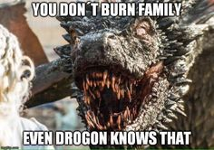 Even Drogon knows that http://gameoflaughs.com/