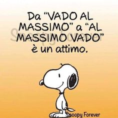Colores Tutorial and Ideas Charlie Brown Peanuts, Peanuts Snoopy, Italian Humor, Snoopy Quotes, My Mood, Funny Images, Vignettes, Wise Words, Funny Quotes