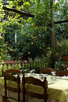 Sorrento, Italy (Loved this restaurant)