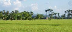 Pursat, Cambodia