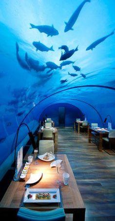 Ithaa Undersea Restaurant, Conrad Maldives Rangali Island(Cool Places In The World)