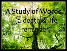 A Study of Words (a Death &  Life Reminder)  http://thechuppies.com/2013/05/study-of-words/
