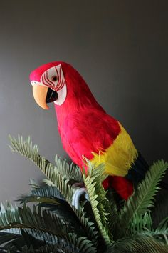 Faux Red Parrot - View All - NEW
