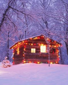 Driving around to see Christmas lights is at the top of our winter bucket list ⛄ #happiestholidays #christmaslights