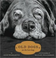 Love this beautiful tribute to old dogs!