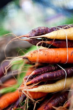I especially like the contrasting colours in this image, the rawness of the texture and the amount of detail in the carrots themselves. Evokes a feeling that these have been recently picked and perhaps purchased direct from the farmer rather than mass produced.