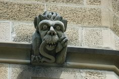 lion with serpent in the mouth