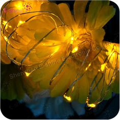 Fashion Promotion Small 20 Bulbs CR2032 Battery Led String Light