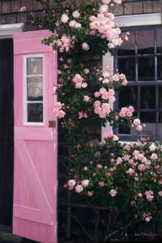 The Pink Door -Siasconset, Nantucket. Artist: Julia O'Malley Keyes. Nantucket Pink, a color used for many old wooden doors on the Island. The combination of this cottage's welcoming open door, the solft color and new dawn roses surrounding it was the inspiration for this painting.