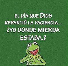 Yo también me lo perdí!! #memes #chistes #chistesmalos #imagenesgraciosas #humor                                                                                                                                                                                 Más