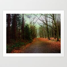 Take My Hand And Walk with Me Art Print by Ally Coxon - $20.00