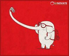 A vantagem de ser elefante ;)