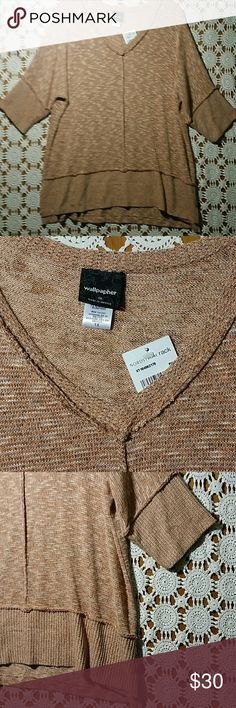 Nordtrom rack WALLPAPHER sweater pink 1X NWT no damage or stain 3/4 sleeve Wallpapher Sweaters V-Necks