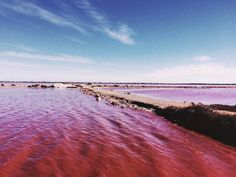 6 Pink lagoons out of a Wes Anderson film - Be Asia #travels #exotism #pink #bucketlist