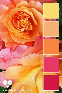 Color Palette: Fantastic Florals — Paper Heart Design Source by toviahcrowell Color Schemes Colour Palettes, Orange Color Palettes, Colour Pallette, Color Palate, Color Combos, Orange Palette, Best Colour Combinations, Yellow Color Schemes, Peach Pallete