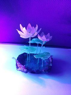 슈링클스 ㅡ 연꽃