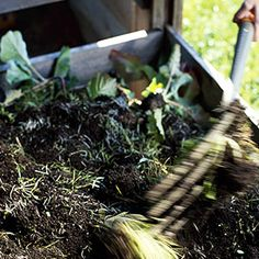 Composting 101 - Learn to make hot & cold compost.
