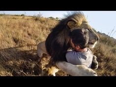 GoPro's promo videos are always breathtaking and awe-inspiring. This latest one, including parts filmed BY orangutans, lions, and a falcon, is unbelievable.