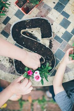 Cute idea!! Plant flowers in letters