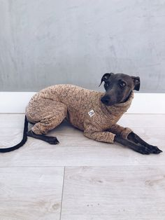 italian greyhound and whippet clothes / iggy clothes / Dog Sweater / ropa para galgo italiano y whippet/ LIGHT PEACH JUMPSUIT Light Peach, Italian Greyhound, Whippet, Dinosaur Stuffed Animal, Etsy, Dogs, Jumpsuits, Handmade, Animals