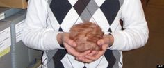 Name The Tribble Contest:  'Star Trek' Creature Featured in American Archives Month Promotion