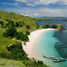 Rinca and Komodo islands on board! Let's #discover the komodo dragons! #Travel #Indonesia