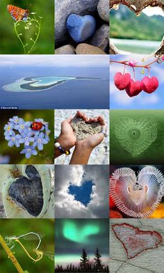 More hearts in Nature Heart In Nature, Heart Art, I Love Heart, With All My Heart, Nature Images, Nature Pictures, Color Collage, Guard Your Heart, Heart Images