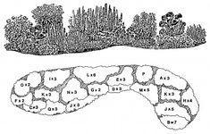 Pastel Perennial - Downloadable Landscape Plans – Sheridan Nurseries