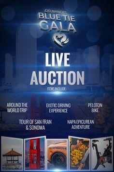 Blue Tie Gala Live & Silent Auction Items