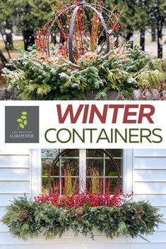 I'll be honest, I have a lot more fun doing outdoor holiday containers than decorating a Christmas tree. This is undoubtedly why I have no problem walking by a bare Christmas tree in my living room multiple times a day without losing my mind.  #impatientgardener #gardening #gardentips #winter #containers #wintercontainers #Christmas Diy Garden Bed, Garden Urns, Easy Garden, Garden Path, Unique Gardens, Beautiful Gardens, Gardening For Beginners, Gardening Tips