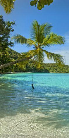Hawksnest Bay, Saint John, US Virgin Islands Caribbean Vacations, Dream Vacations, Vacation Spots, Places To Travel, Places To See, Us Virgin Islands, Virgin Islands Vacation, Island Beach, Beach Trip