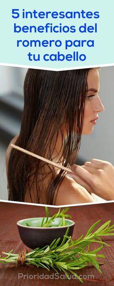 5 interesantes beneficios del romero para tu cabello