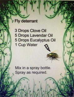 Fly spray