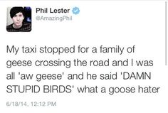Phil's tweet though :')