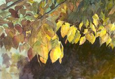 Autumn Leaves, Original Watercolor, Louise O'Donnell
