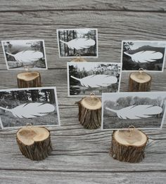 Wilderness Place Cards & Wood Holders – Set of 6 | Home Decor | Wonderful Collective | Scoutmob Shoppe | Product Detail