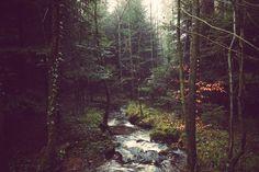 quiet place by unchatsurlalune on DeviantArt