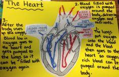 pedagogy of the heart pdf