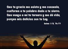 Que tu gracia me asista y me consuele, conforme a tu palabra dada a tu siervo. Que venga a mi tu ternura y me de vida, porque mis delicias son tu Ley. Salmo 119, 76-77