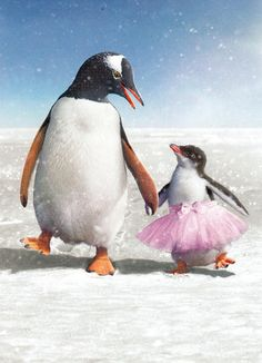 "Our Penguin Father's Day Card is just perfect for penguin lovers father's and daughter's. The card is 5"" x 7"" and comes with a companion envelope. The inside reads: ""You're the best Dad ever! Happy Fa"