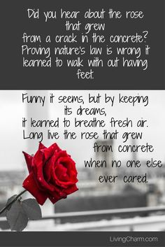 Inspirational Quotes - The Rose That Grew From Concrete. Part of a larger collection of poems written by Tupac Shakur