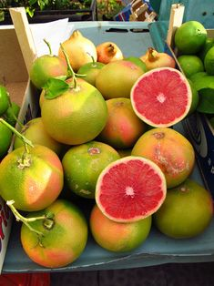 Pink grapefruit (pompelmo rosa) for sale at the Ortigia Market in Siracusa, Sicily