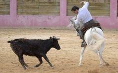 Fandiño 'se pasa' al rejoneo - Mundotoro.com #toros #rejoneo #rejones